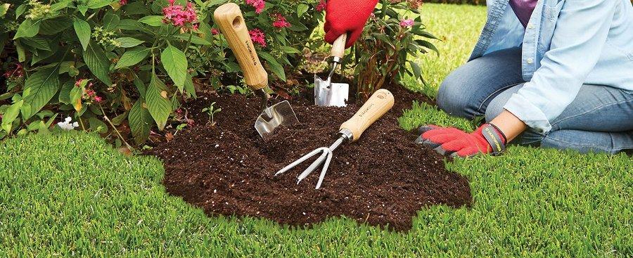 prendersi cura del proprio giardino